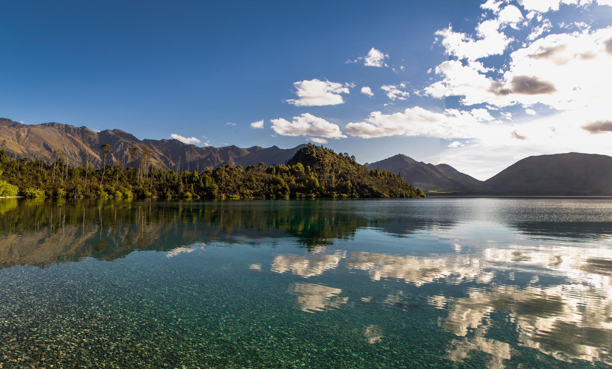 New Zealand, Swim Guide, Pulse Energy