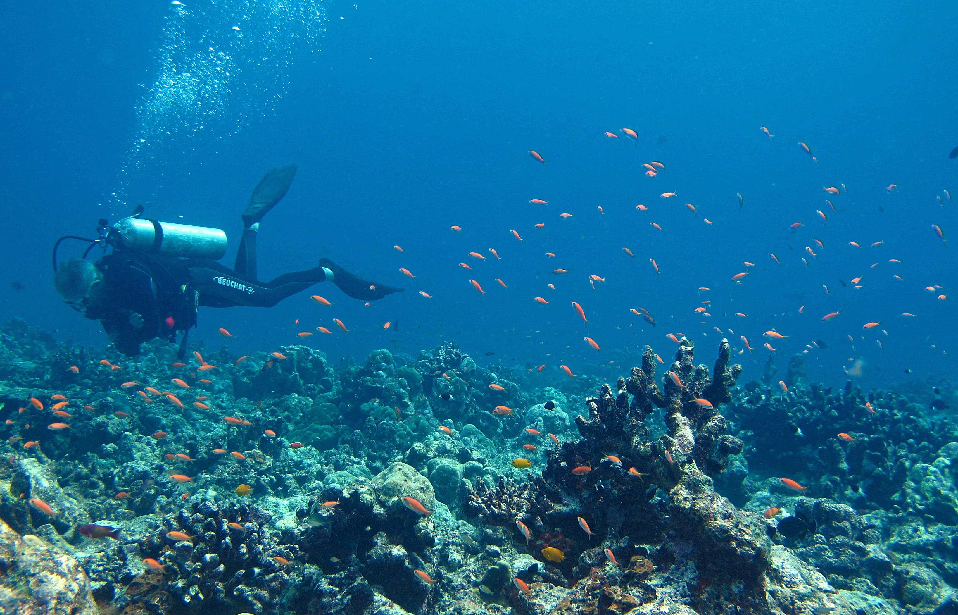 breathing underwater, scuba diver