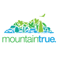 Mountain True