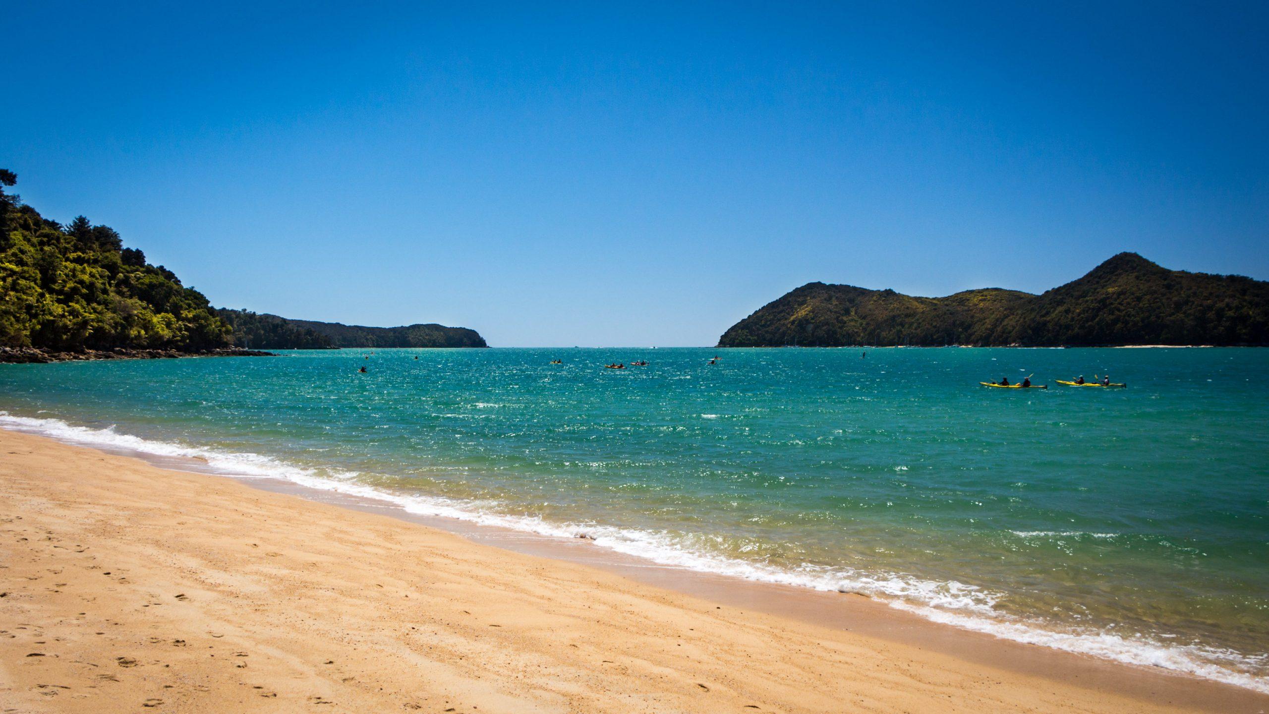 Waiheke Island Beaches, Paradise in New Zealand
